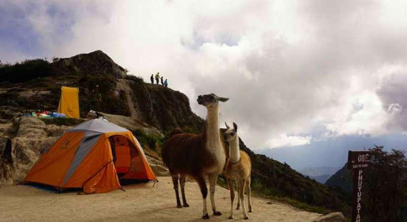 clasic inca trail tour